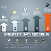 Business Intelligence, Niveles de Madurez