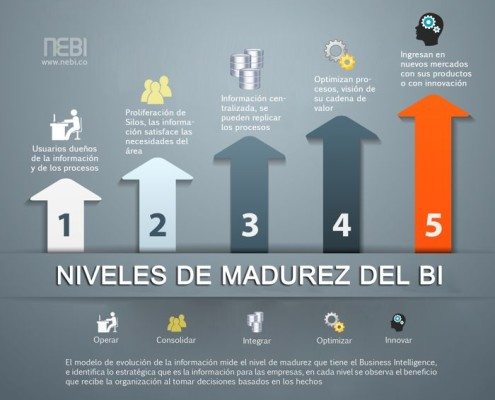 Business Intelligence, Niveles de Madurez